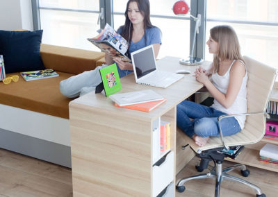 Evolve Sliding Desk