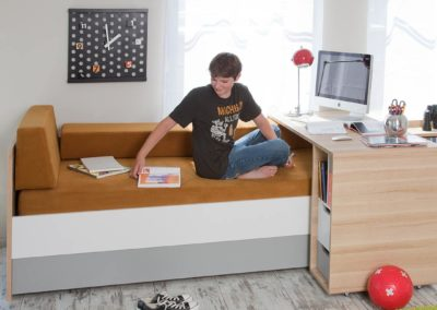 Evolve Couch Bed & Evolve Sliding Desk